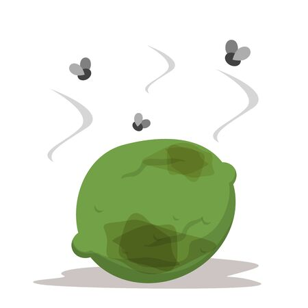 Rotten green lime and fly above. Food waste, bad fruit. Healthy ingredient rot. Vegetable garbage, risk of infection vector isolated. Vektorové ilustrace