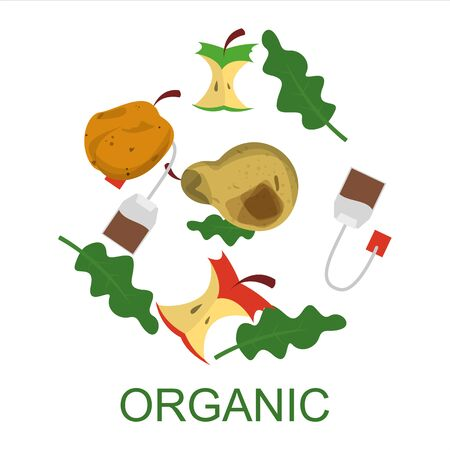 Organic waste collection vector isolated. Food garbage, apple core. Segregation of rubbish. Kitchen leftovers. Vektorové ilustrace