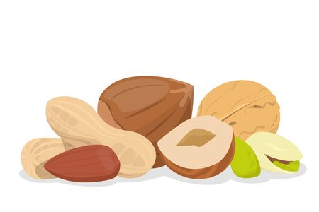 Nut collection vector isolated. Natural food, snack seed with nutshell. Raw pistachio and hazel, vegetarian ingredient for cooking.