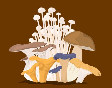 Mushroom collection vector isolated. Organic food, set of edible fungus. Healthy vegetable from the forest. Çizim