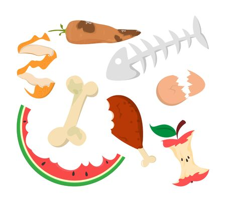 Food garbage vector isolated. Organic waste. Apple core, chicken leg and watermelon peel. Kitchen leftovers. Vector Illustration