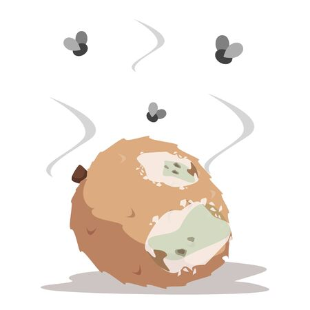 Rotten lychee vector isolated illustration. Food waste, poisonous exotic fruit. Insects flying around the rotting food. Fungus on the fruit.