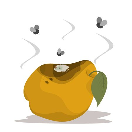 Rotten quince vector isolated. Yellow fruit, damaged and bruised. Mold on the peel. Flies flying around the overripe product. Vektorové ilustrace