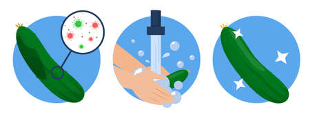 Hands washing dirty cucumber and it becomes clean. Idea of health and hygiene. Cleaning food from bacterium, protection from the virus disease. Ilustrace