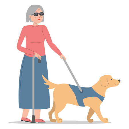 Blind woman walking with a dog vector isolated. Old handicapped lady in sunglasses with stick. Concept of people with disabilities. Companion for impaired person. Иллюстрация