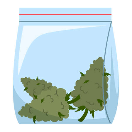 Marijuana buds in plastic bag vector isolated. Cannabis drug, illegal narcotic. Herbal medicine concept.