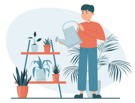 Man watering plants in pots vector isolated. Illustration of a male character taking care of house plants. Gardening concept. Beautiful potted plants.