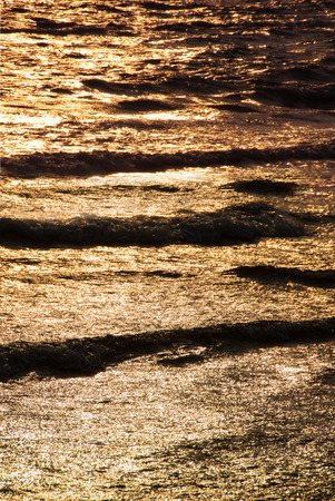 wavelet: Golden wavelet at sunset in foreground