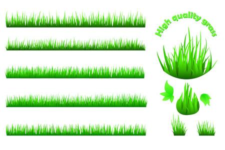 grass verge: High quality vector green grass set for backgrounds