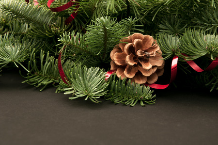 green fir-tree twigs with cones and a red ribbon on a dark background