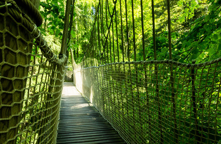 Rope suspension bridge in the forest