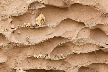 Close-up termite nest made by soil background