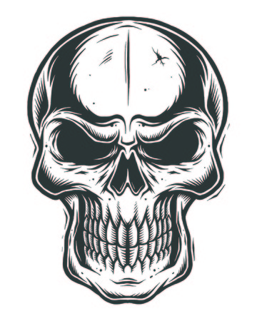 line work: Isolated skull on white background. line work style Illustration