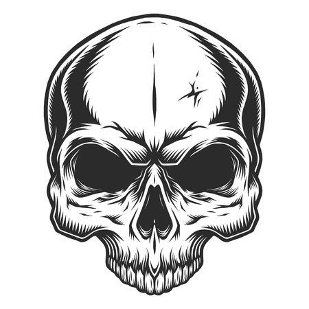 Monochrome illustration of skull without jaw. On white background