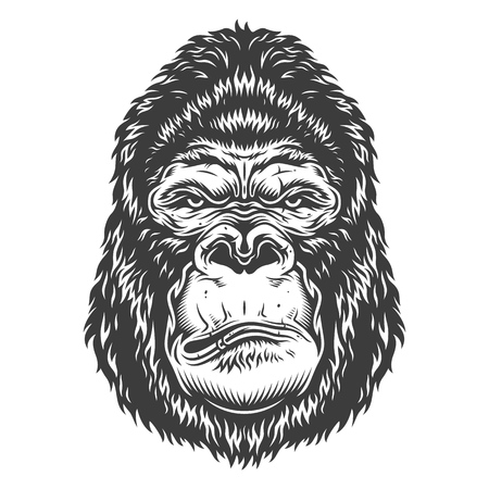 Head of gorilla