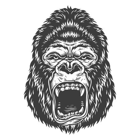 Head of gorilla