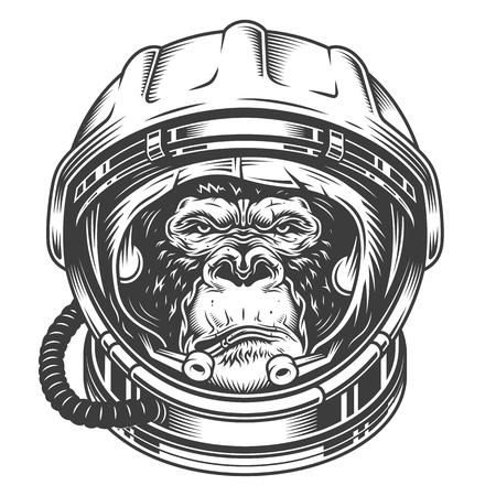 Tête de gorille