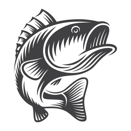 Concetto di pesce spigola vintage Vettoriali