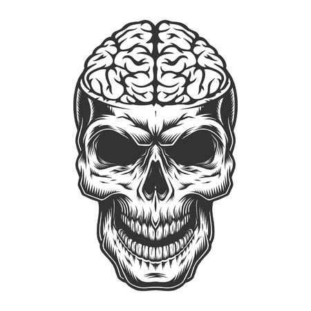 Skull with the brain 向量圖像