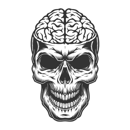 Skull with the brain Illustration