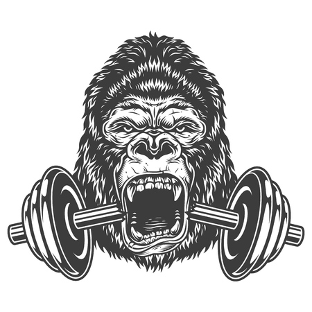 Bodybuilding concept with gorilla