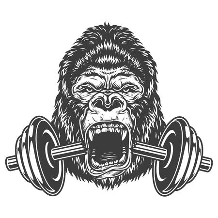 Concetto di bodybuilding con gorilla