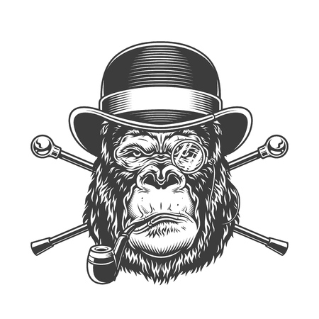 Vintage serious gorilla head smoking pipe in fedora hat with rimless eyeglass and crossed canes isolated vector illustration