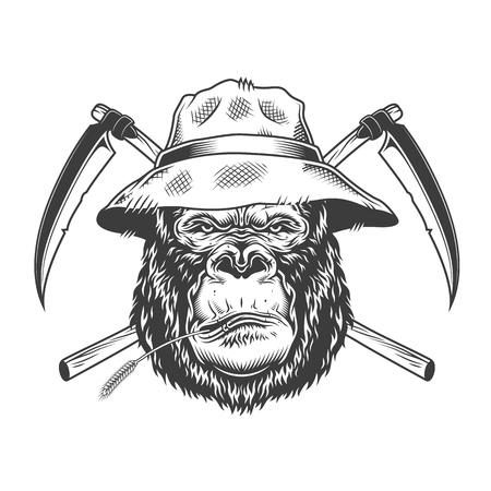 Serious gorilla head in panama hat with straw and crossed scythes in vintage monochrome style isolated vector illustration