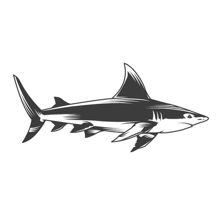 Vintage monochrome shark side view concept isolated vector illustration Illustration