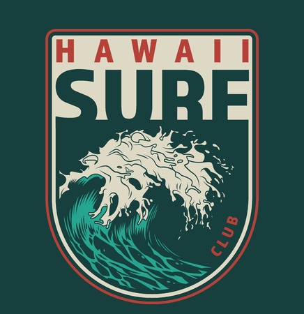 Vintage hawaii surfing colorful label with big sea wave isolated vector illustration