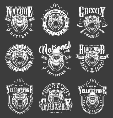 Vintage Yellowstone national park labels set with angry and serious bears heads crossed axes arrows forest silhouette isolated vector illustration