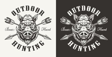Vintage boar hunting label with ferocious hog head and crossed arrows on light and dark backgrounds isolated vector illustration
