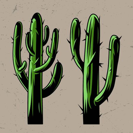 Green cactus plants concept in vintage style isolated vector illustration Reklamní fotografie - 128069871