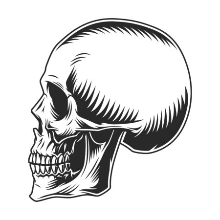 Vintage human skull profile template on white background isolated vector illustration