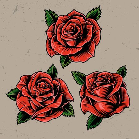 Vintage red blooming roses concept on gray background isolated vector illustration Illustration