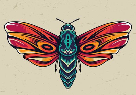 Colorful beautiful butterfly concept in vintage style isolated vector illustration