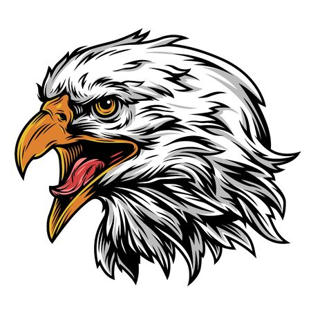 Vintage eagle head mascot colorful concept on white background isolated vector illustration Ilustracja