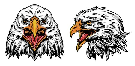 Vintage colorful eagle heads concept with front and side views on white background isolated vector illustration