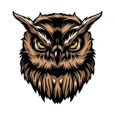 Colorful concentrated wise owl template in vintage style isolated vector illustration