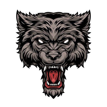 Testa di lupo feroce spaventoso pericoloso colorato in stile vintage isolato illustrazione vettoriale Vettoriali