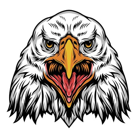 Colorful angry eagle head template in vintage style isolated vector illustration