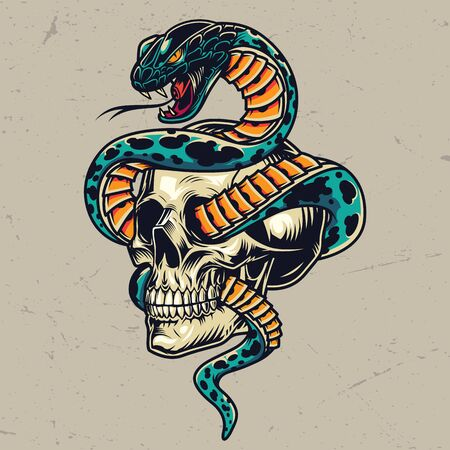 Snake entwined with skull colorful concept in vintage style isolated vector illustration