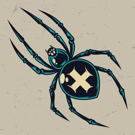 Colorful scary cross spider vintage template on light background isolated vector illustration