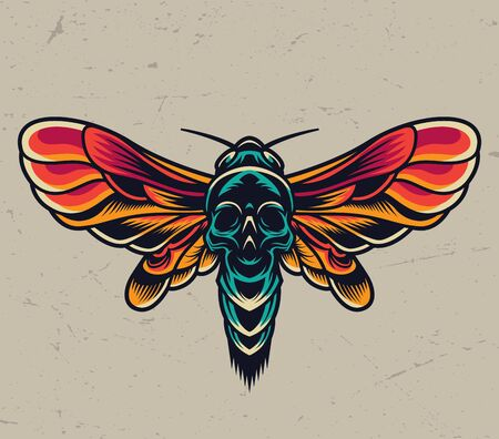 Vintage colorful flying death head moth with skull silhouette on abdomen isolated vector illustration