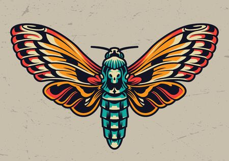 Colorful beautiful butterfly in vintage style on light background isolated vector illustration