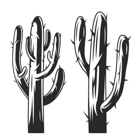 Vintage cactus plants concept in vintage style isolated vector illustration