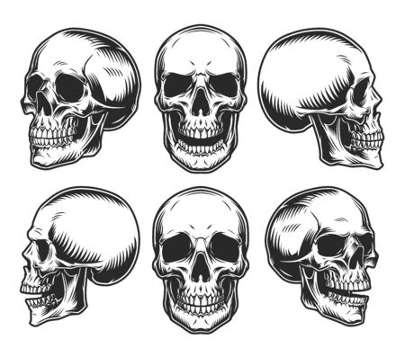Human skulls collection in different positions in vintage monochrome style isolated vector illustration Illustration