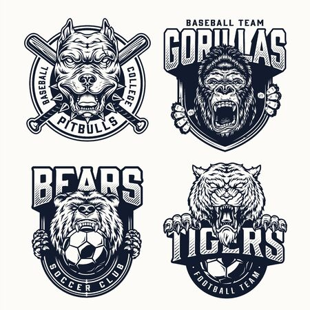 Football and baseball teams with angry gorilla tiger pitbull bear heads mascots crossed baseball bats soccer balls in vintage monochrome style isolated vector illustration