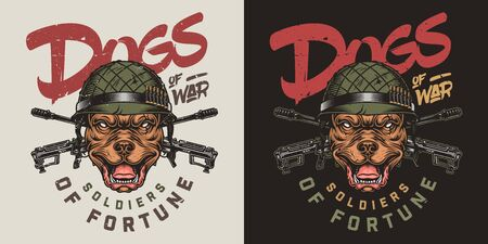 Colorful vintage military print with inscriptions crossed assault rifles and pitbull head in soldier helmet isolated vector illustration 向量圖像