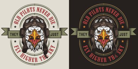 Colorful military label with aggressive eagle head in pilot helmet in vintage style isolated vector illustration